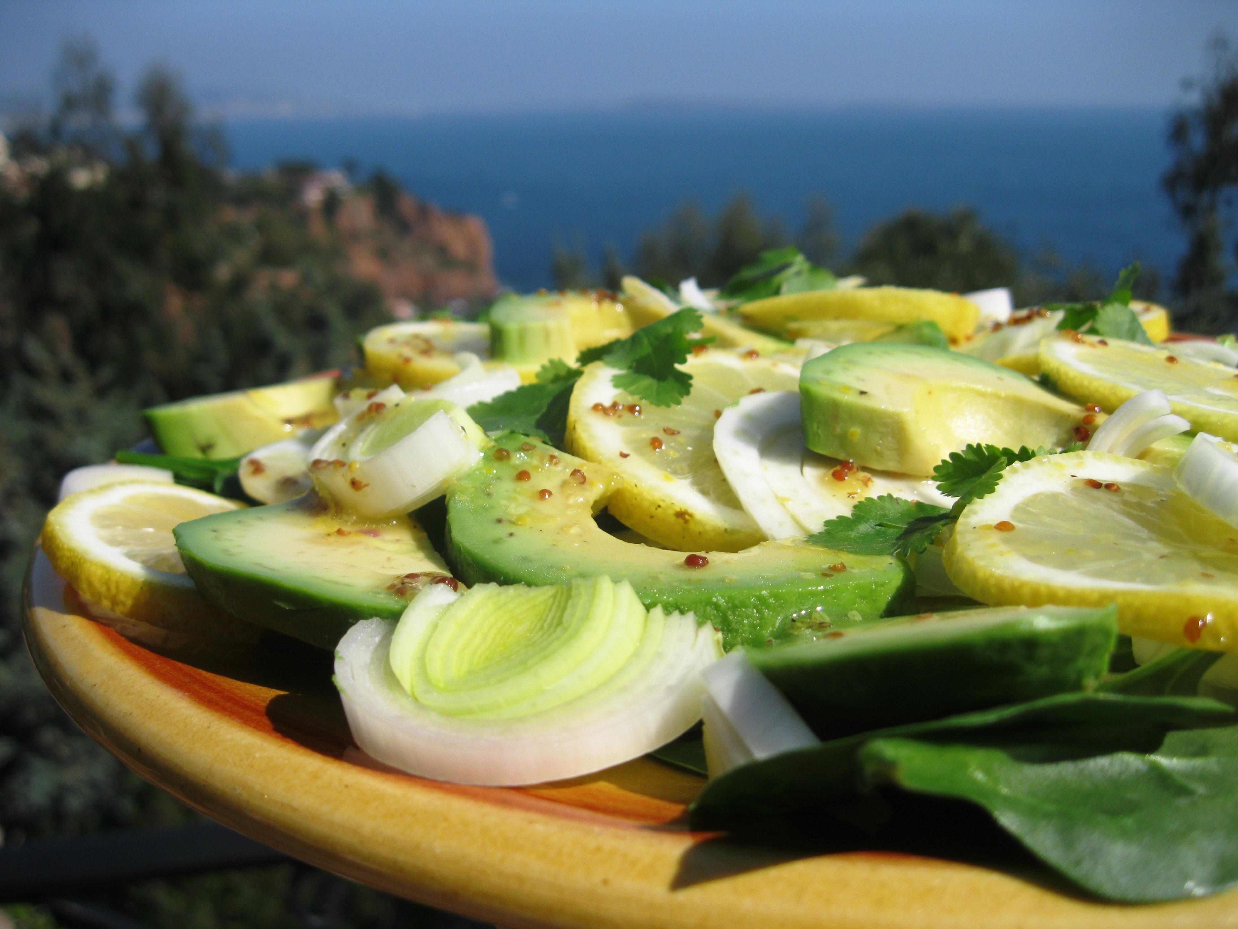 avo fennel salad2