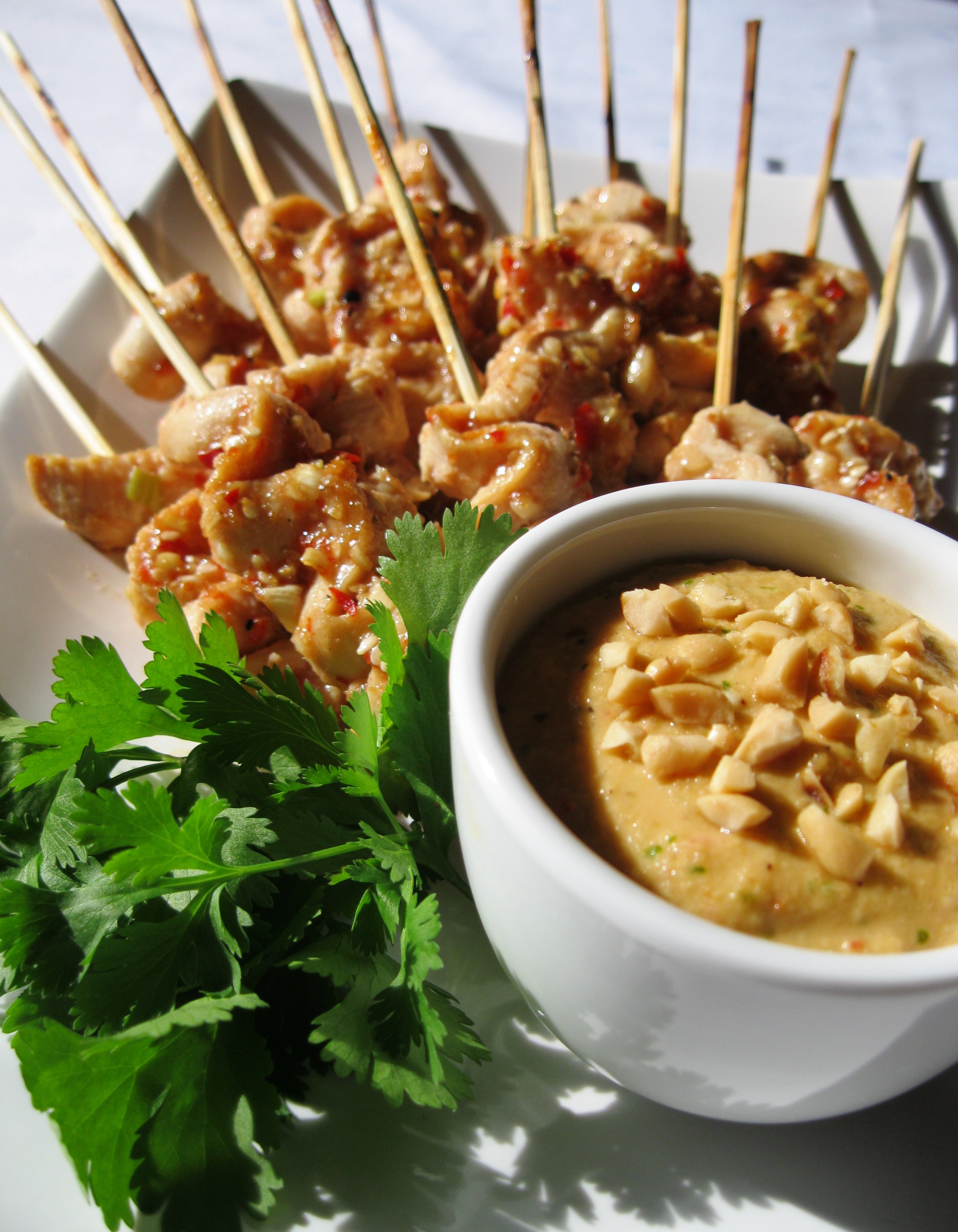 indonesian satay chicken and spicy peanut dip